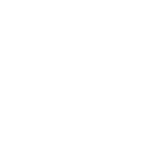 colorchid-collection